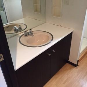 洗面台の脇に小壁があることで、狭く暗い印象。洗面台も低くて使いにくい。